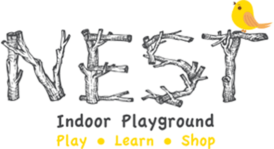 Nest Indoor Playground